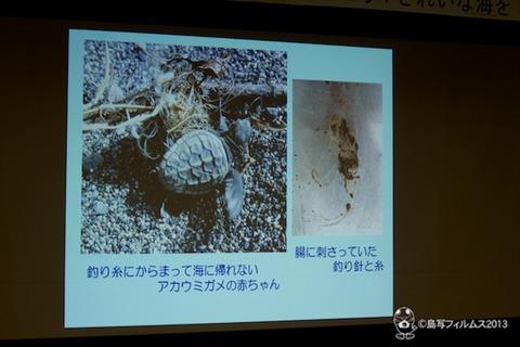 ウミガメ隊_環境サミットin南知多_2013-08-24 14-44-20