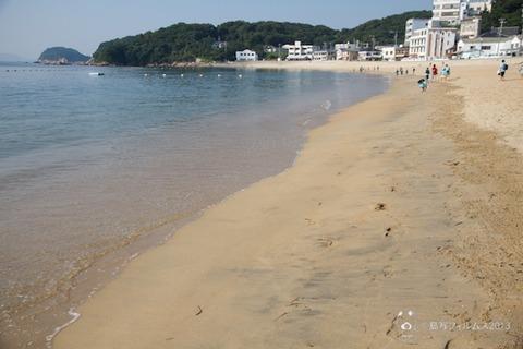 ウミガメ隊_ゴミ拾い_前浜_2013-07-10 07-44-25