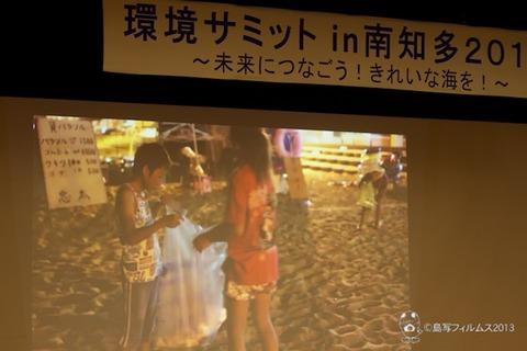 ウミガメ隊_環境サミットin南知多_2013-08-24 15-10-10