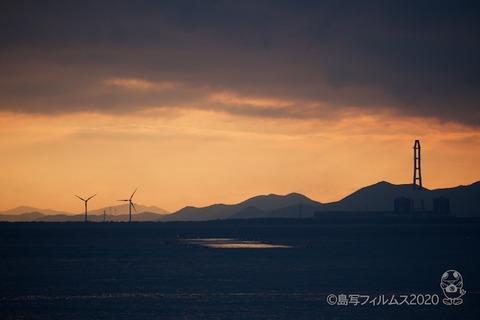 篠島ウミガメ隊_2020-01-15 07-35-59
