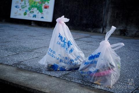 篠島ウミガメ隊_2020-01-15 07-57-42