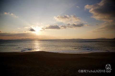 篠島ウミガメ隊_2018-01-10 07-37-34