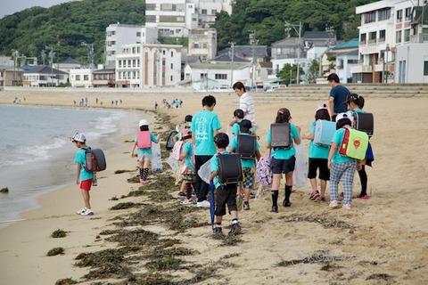 篠島ウミガメ隊_2016-06-08 07-40-36