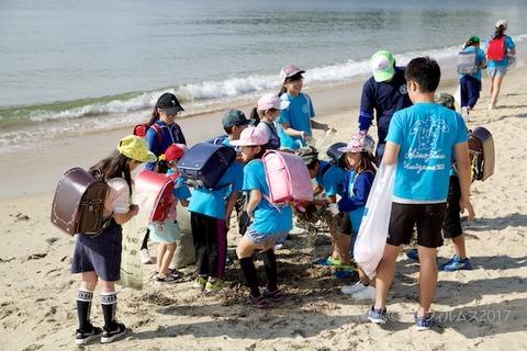 篠島ウミガメ隊_2017-06-14 07-42-04