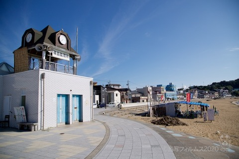 篠島ウミガメ隊_2020-07-22 07-32-31