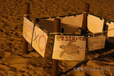 ウミガメ産卵_篠島_前浜_2011-07-04 20-37-38