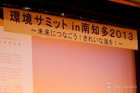 ウミガメ隊_環境サミットin南知多_2013-08-24 15-31-47
