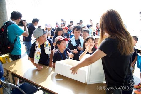篠島ウミガメ隊_2018-07-16 08-02-40