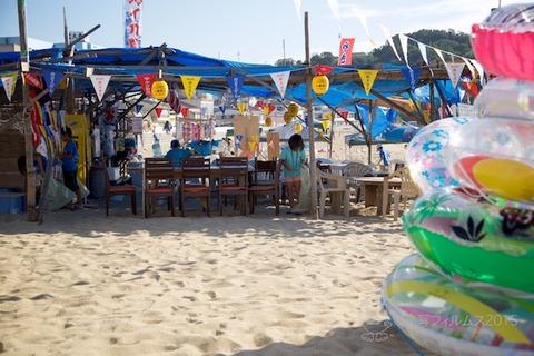 ウミガメ隊_2015-08-12 07-34-05