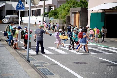 篠島ウミガメ隊_2020-07-15 07-52-32