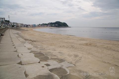 篠島ウミガメ隊_2020-07-29 07-55-01
