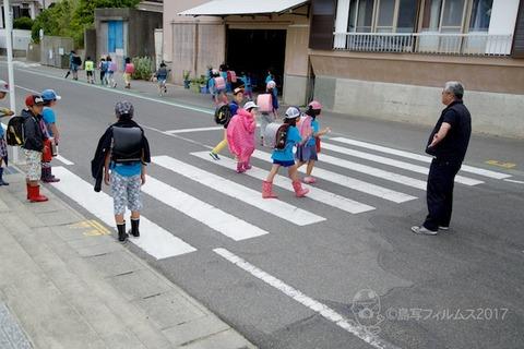 篠島ウミガメ隊_2017-06-07 07-54-18 - 2017-06-07 07-54-18