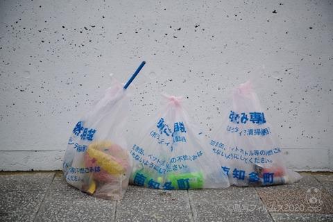 篠島ウミガメ隊_2020-07-29 07-53-53