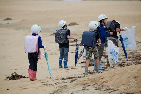 篠島ウミガメ隊_2018-05-23 07-46-21