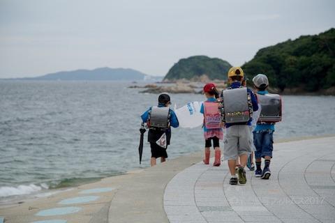 篠島ウミガメ隊_2017-06-07 07-36-37 - 2017-06-07 07-36-37