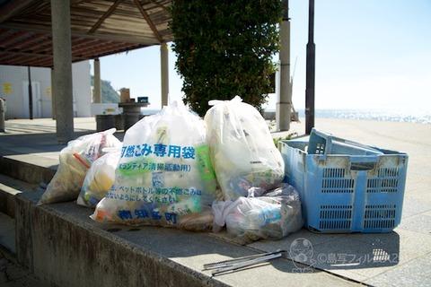 ウミガメ隊_2015-08-05 08-28-34