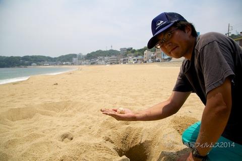 篠島ウミガメビーチランド_06-20 12-12-43