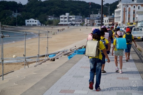 篠島ウミガメ隊_2019-06-26 07-51-18