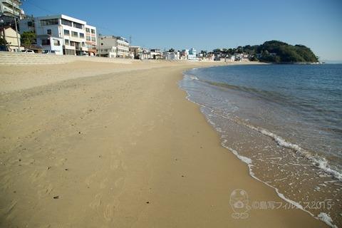 ウミガメ隊_2015-10-14 07-45-39