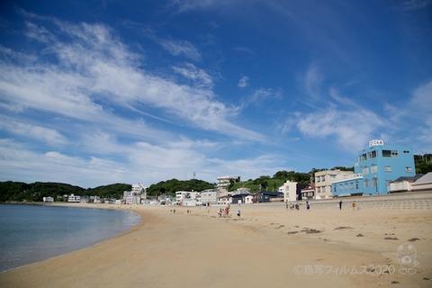 篠島ウミガメ隊_2020-06-17 07-42-20