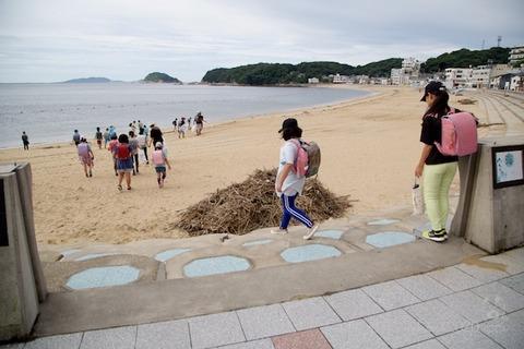篠島ウミガメ隊_2020-07-15 07-39-15