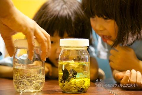 ウミガメ隊_結団式_2014-05-28 14-39-38
