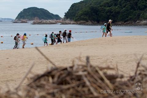 篠島ウミガメ隊_2020-07-15 07-47-48