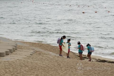 篠島ウミガメ隊_2016-07-06 07-32-50