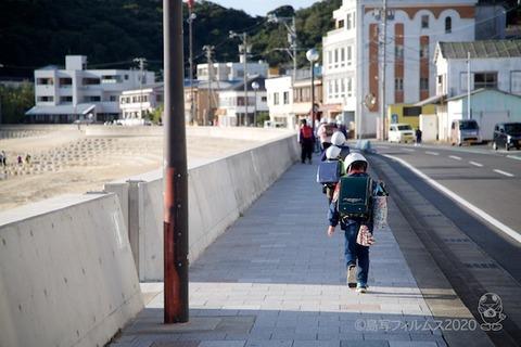 篠島ウミガメ隊_2020-11-04 07-50-13