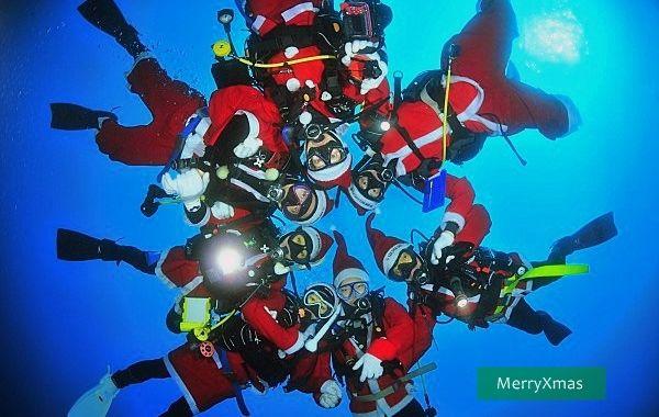 海洋公園 MerryXmas