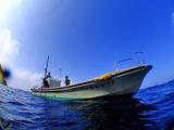 御蔵島イルカ船「第二幸晋丸」