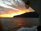 御蔵島の夜明け