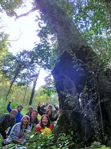 御蔵島の巨樹にて記念撮影