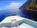 ベタベタの御蔵島の海