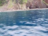 御蔵島のベタ凪の海