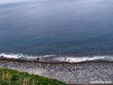 イルカの見える丘から