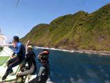 御蔵島沿岸