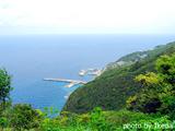 御蔵島 エビネ公園からの景色