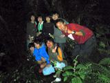 御蔵島の深い森へ潜入!