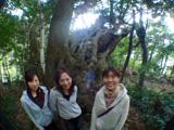 巨樹の前で記念撮影