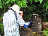 御蔵島水汲み場