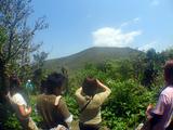 御蔵島の最高地点・御山の頂きを望む