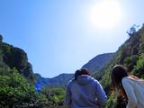 御蔵島散策中。雲ひとつない青空!