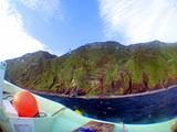 御蔵島の森の緑と青空
