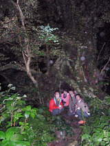御蔵島 伊奈佐のオオジイ