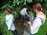 水汲み場で御蔵島天然水