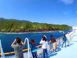 亜熱帯気候の八丈島