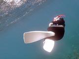 港でスキンダイビング練習