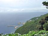 御蔵島港を望む