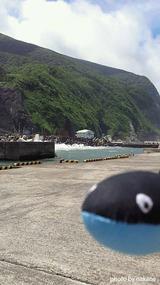 うねりの御蔵島港